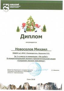 """Конкурс Сохраним лесную красавицу номинация """"Не руби!"""""""