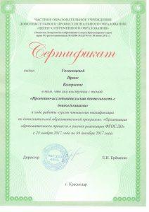 Сертификат КПК Выступление 30.11.2017